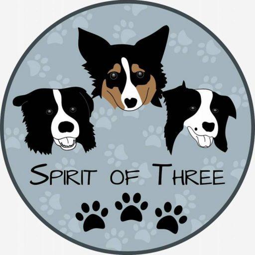 Spirit Of Three